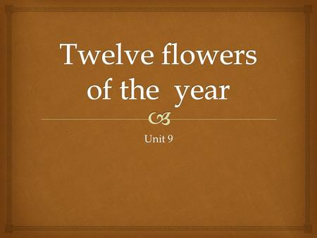 Twelve flowers of the year