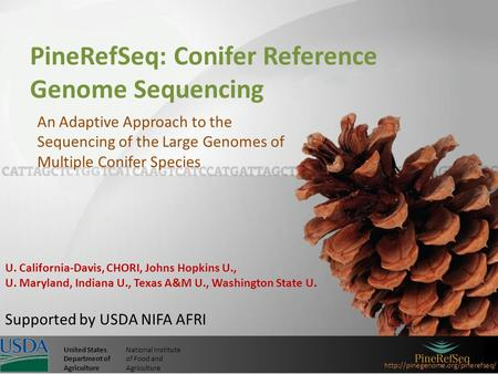 United StatesNational Institute Department ofof Food and AgricultureAgriculture PineRefSeq: Conifer Reference Genome.