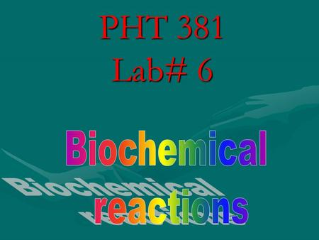 PHT 381 Lab# 6 Biochemical reactions.