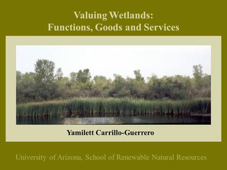 Valuing Wetlands: Functions, Goods and Services University of Arizona, School of Renewable Natural Resources Yamilett Carrillo-Guerrero.