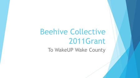 Beehive Collective 2011Grant To WakeUP Wake County.