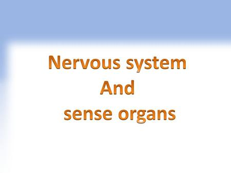 Neur/o,i Nervous System,Nervous tissue Neuroallergy Neurology Neuroarthropathy Allergy in nervous system The branch of medical science concerned with.