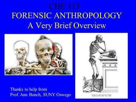 CHE 113 1 FORENSIC ANTHROPOLOGY A Very Brief Overview CHE 113 Thanks to help from Prof. Ann Bunch, SUNY Oswego.