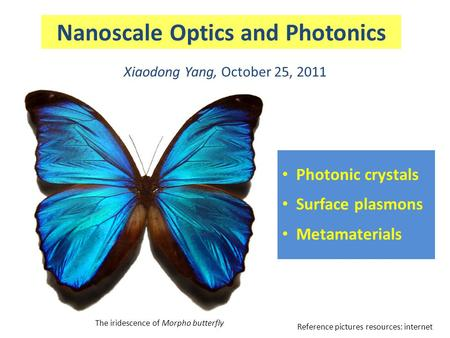 Nanoscale Optics and Photonics Xiaodong Yang, October 25, 2011 The iridescence of Morpho butterfly Photonic crystals Surface plasmons Metamaterials Reference.
