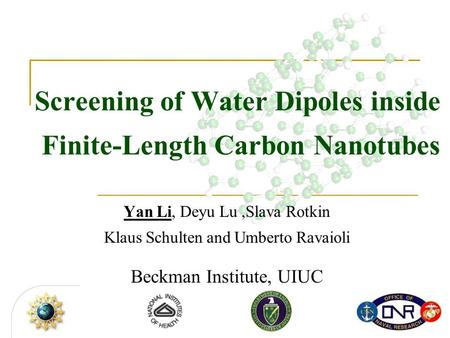 Screening of Water Dipoles inside Finite-Length Carbon Nanotubes Yan Li, Deyu Lu,Slava Rotkin Klaus Schulten and Umberto Ravaioli Beckman Institute, UIUC.