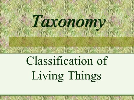 Taxonomy Classification of Living Things. TAXONOMY- the science of naming and classifying organisms Aristotle: grouped plants and animals based on similarities.