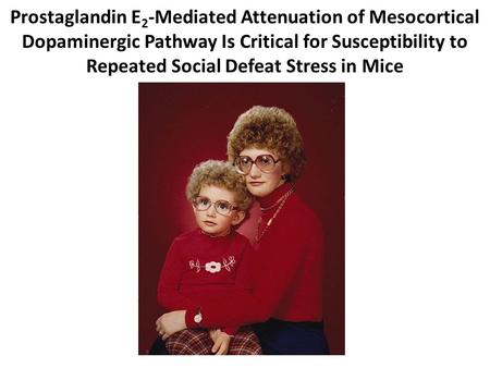 Prostaglandin E 2 -Mediated Attenuation of Mesocortical Dopaminergic Pathway Is Critical for Susceptibility to Repeated Social Defeat Stress in Mice.