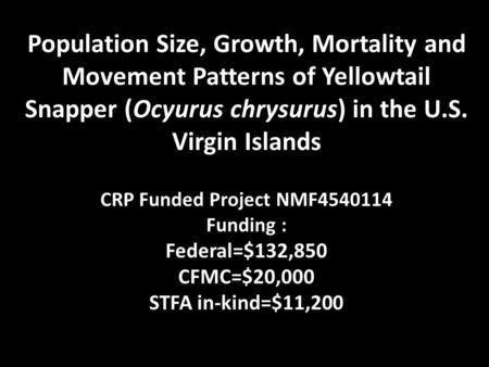 Population Size, Growth, Mortality and Movement Patterns of Yellowtail Snapper (Ocyurus chrysurus) in the U.S. Virgin Islands CRP Funded Project NMF4540114.