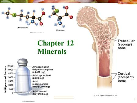 © 2010 Pearson Education, Inc. Chapter 12: Minerals.