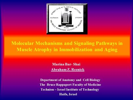 Molecular Mechanisms and Signaling Pathways in Muscle Atrophy in Immobilization and Aging Marina Bar- Shai Abraham Z. Reznick Department of Anatomy and.
