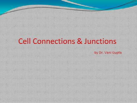 Cell Connections & Junctions by Dr. Vani Gupta