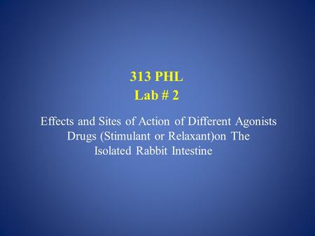313 PHL Lab # 2 Effects and Sites of Action of Different Agonists Drugs (Stimulant or Relaxant)on The Isolated Rabbit Intestine.