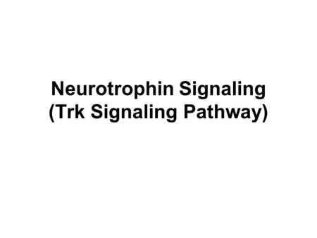 Neurotrophin Signaling (Trk Signaling Pathway). Neurotrophins The neurotrophins are a family of proteins that are essential for the development of the.