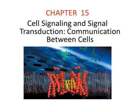 CHAPTER 15 Cell Signaling and Signal Transduction: Communication Between Cells.