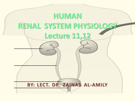 HUMAN RENAL SYSTEM PHYSIOLOGY Lecture 11,12