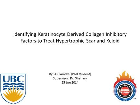 Identifying Keratinocyte Derived Collagen Inhibitory Factors to Treat Hypertrophic Scar and Keloid By: Ali Farrokhi (PhD student) Supervisor: Dr. Ghahary.