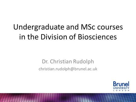 Undergraduate and MSc courses in the Division of Biosciences Dr. Christian Rudolph