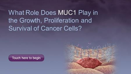 MUC1 Is Associated With Diverse Cellular Functions in Normal Epithelial Cells MUC1 (Mucin 1) Plays a Central Role In Cellular Functions of Both Normal.