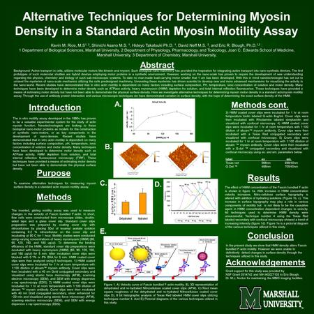 Alternative Techniques for Determining Myosin Density in a Standard Actin Myosin Motility Assay Kevin M. Rice, M.S 1, 2, Shinichi Asano M.S. 1, Hideyo.