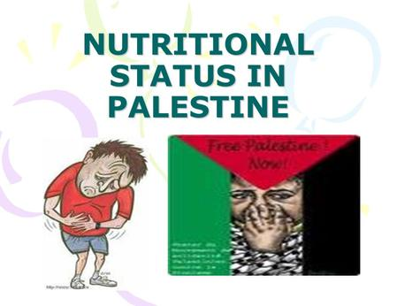 NUTRITIONAL STATUS IN PALESTINE. OBJECTIVES NS in Palestine in general. NS from 1967-present. Anemia prevalance among pregnant women. NS among palestinian.