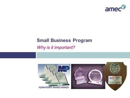 Small Business Program Why is it important?. Role of the AMEC Small Business Program  Identify and promote various small business firms to internal personnel.