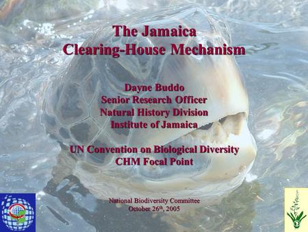 The Jamaica Clearing-House Mechanism Dayne Buddo Senior Research Officer Natural History Division Institute of Jamaica UN Convention on Biological Diversity.