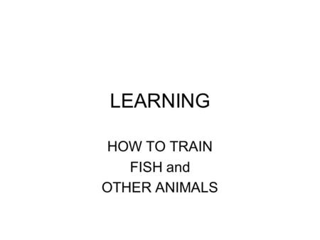 LEARNING HOW TO TRAIN FISH and OTHER ANIMALS. Learning How can you tell if a fish or person is learning? How can a person discriminate if an organism.