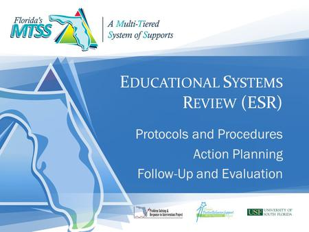 E DUCATIONAL S YSTEMS R EVIEW (ESR) Protocols and Procedures Action Planning Follow-Up and Evaluation.