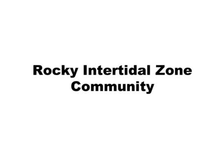 Rocky Intertidal Zone Community. Intertidal Zone Area of the shore between the highest high tide and lowest low tide.