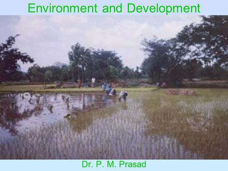 Environment and Development Dr. P. M. Prasad. Environmental Problems Theory of Environmental Policy Environmental Policy in India.