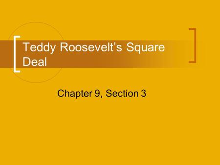 Teddy Roosevelt's Square Deal Chapter 9, Section 3.