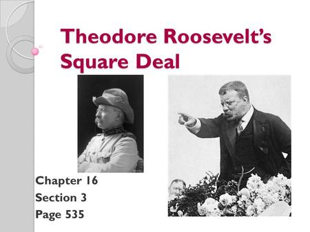 Theodore Roosevelt's Square Deal Chapter 16 Section 3 Page 535.