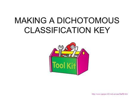 how to make dichotomous classification key