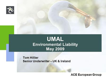 ACE European Group UMAL Environmental Liability May 2009 Tom Hillier Senior Underwriter – UK & Ireland.