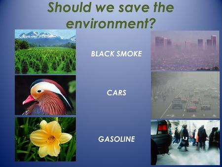 Should we save the environment? CARS GASOLINE BLACK SMOKE.