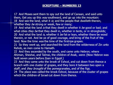SCRIPTURE – NUMBERS 13 17 And Moses sent them to spy out the land of Canaan, and said unto them, Get you up this way southward, and go up into the mountain: