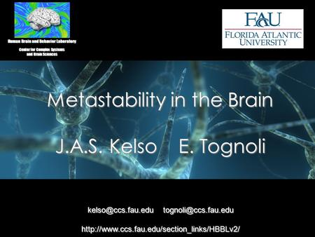 Metastability in the Brain J.A.S. Kelso E. Tognoli Human Brain and Behavior Laboratory Center for Complex Systems and Brain Sciences