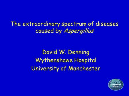 The extraordinary spectrum of diseases caused by Aspergillus David W. Denning Wythenshawe Hospital University of Manchester.