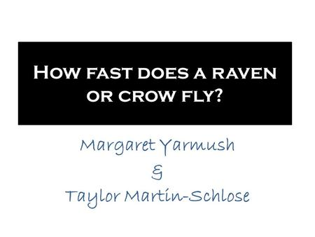 How fast does a raven or crow fly?
