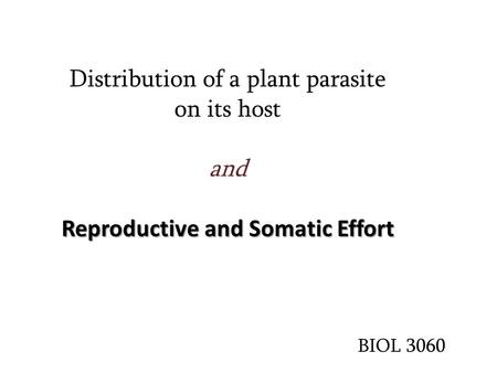Reproductive and Somatic Effort Distribution of a plant parasite on its host and Reproductive and Somatic Effort BIOL 3060.