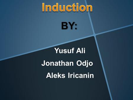 Yusuf Ali Aleks Iricanin Jonathan Odjo Essential question: How does induction impact what you believe in or your own personal beliefs?