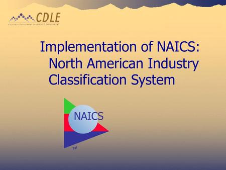 Implementation of NAICS: North American Industry Classification System
