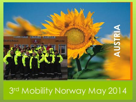 3 rd Mobility Norway May 2014 AUSTRIA. 3 rd Grade Multiplication and oral training in English Very positive to use different learning strategies for learning.