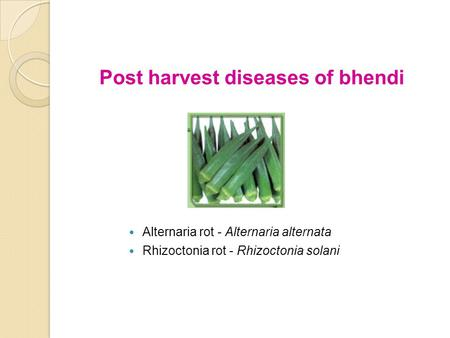 Post harvest diseases of bhendi Alternaria rot - Alternaria alternata Rhizoctonia rot - Rhizoctonia solani.