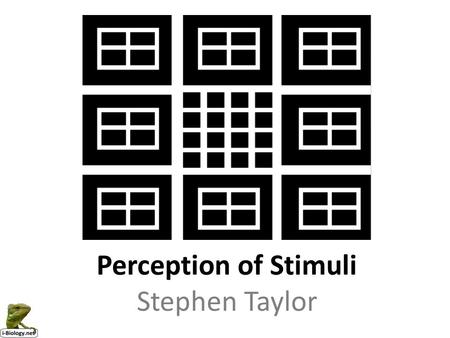 Perception of Stimuli Stephen Taylor.