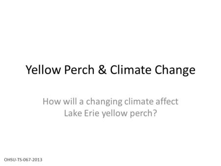 Yellow Perch & Climate Change How will a changing climate affect Lake Erie yellow perch? OHSU-TS-067-2013.