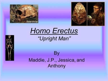 "Homo Erectus ""Upright Man"" By Maddie, J.P., Jessica, and Anthony."