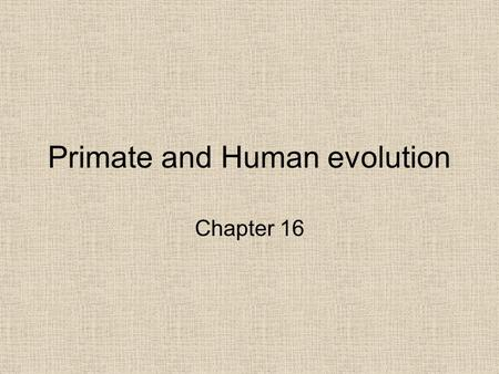 Primate and Human evolution