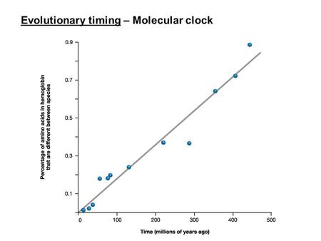 Evolutionary timing – Molecular clock. Human evolutionary history Humans show similarities with 'apes' (gibbons, orang, gorilla, chimps) shared derived.