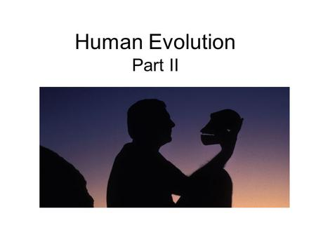Human Evolution Part II